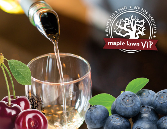 VIP Wine Tasting Event - New Blueberry and Cherry Wines